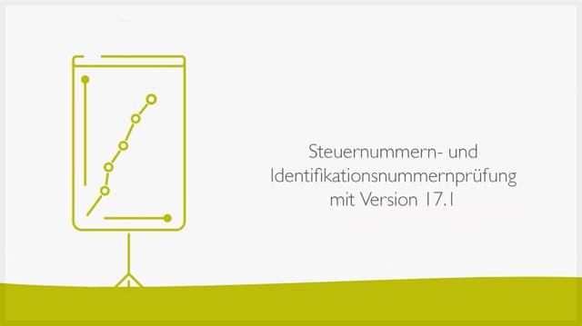 Steuernummern- und Identifikationsnummernprüfung mit Version 17.1