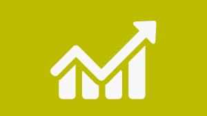 E-Bilanz Icon